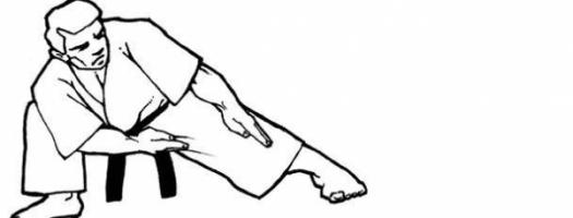 karate alaquas