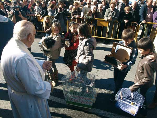 Sant Antoni en Almussafes 2012