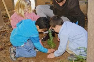 Celebración del Día del árbol en Alfafar